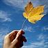 Haut im Herbst : Jetzt gibts eine Extraportion an Pflege!