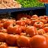 XXXWohlbefinden und Ernährung: Superfood für den kleinen Geldbeutel