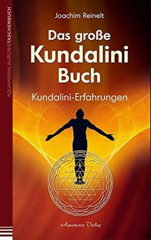 Das große Kundalini-Buch Kundalini-Erfahrungen