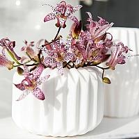 Teelichthalter-Set Quin, 2er-Set