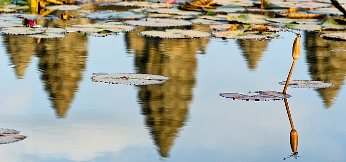 Der Tod ist nur eine Illusion: Climate Ride Saigon to Angkor Wat
