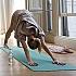 Top 5 - Das macht Yoga mit deinem Körper