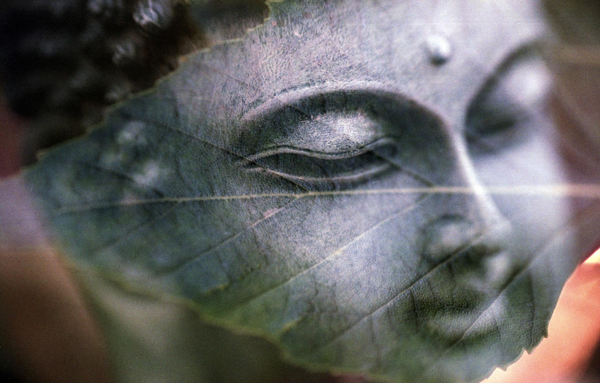 Ich bin reines Bewusstsein   Lebe-Liebe-Lache.com