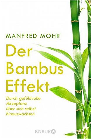 Manfred Mohr: Der Bambus-Effekt