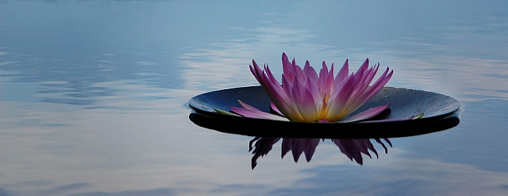 Meditation shutterbean/pixabay 66