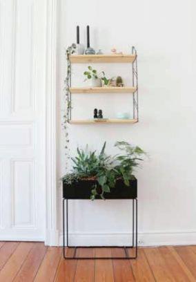 Lieblingsstücke und Pflanzen: Auf einem Regal werden Johannas aktuelle Lieblingsstücke ausgestellt.