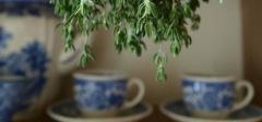 Wiederentdecktes Hausmittel hilft bei Fibromalgie, rheumatischen Erkankungen und mehr...