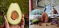 Die meisten Leute werfen  Avocado-Kerne weg, aber diese Künstlerin schnitzt daraus  magische Waldgeschöpfe