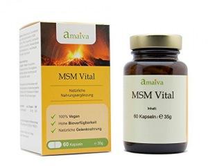 MSM Vital 1-Monatspackung (Methylsulfonylmethan-Kombination in Kapseln, höchste Qualität, hergestellt in Deutschland)