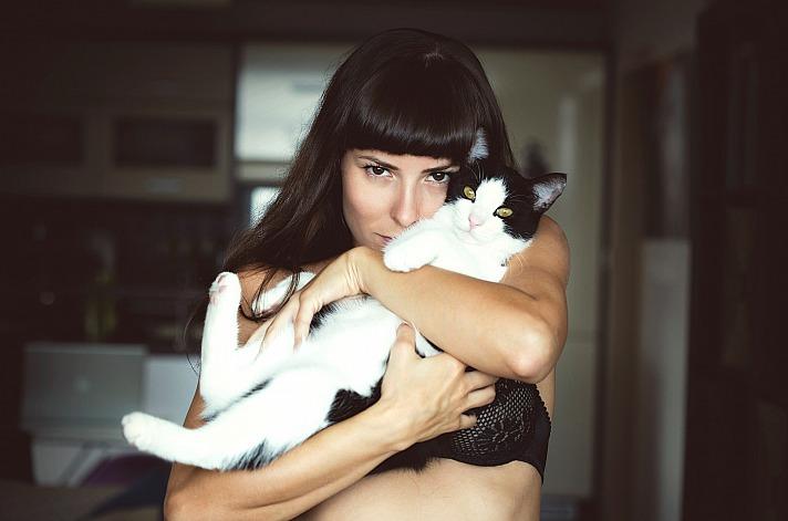 Katze frau Free-Photos/pixabay 40