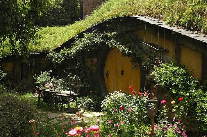 Garden lucasgruwez/unsplash 9