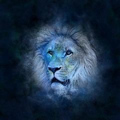 Tierkreiszeichen Löwe