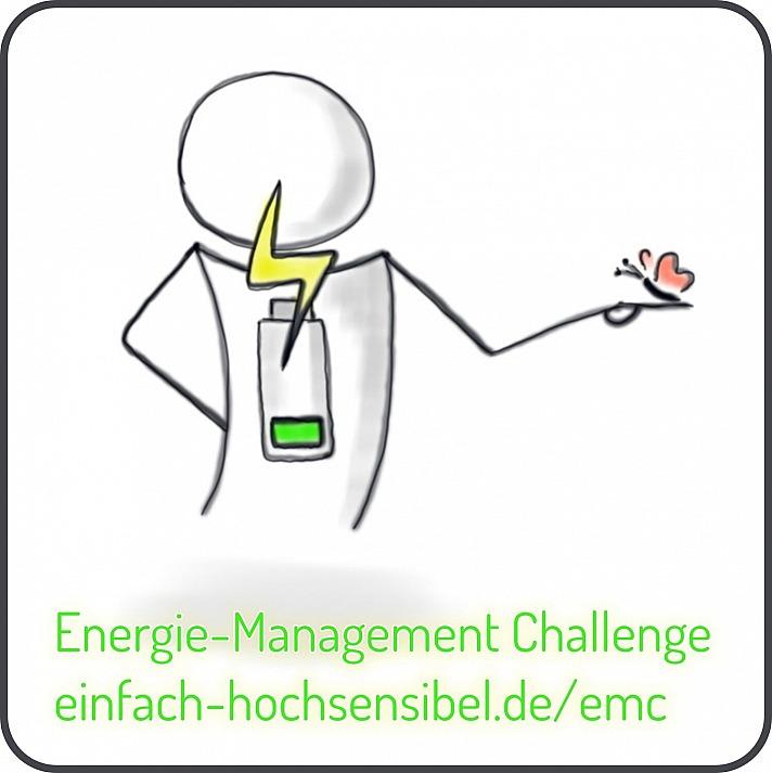 Energie-Management Challenge