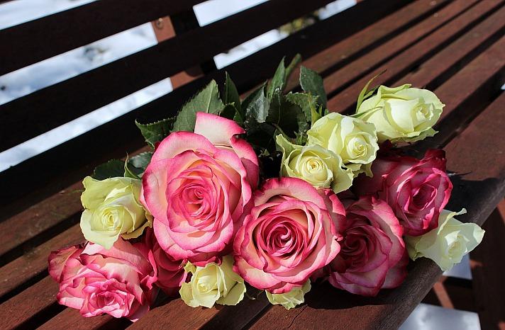 User:Myriams-Fotos rosenstrauss Myriams-Fotos/pixabay 1