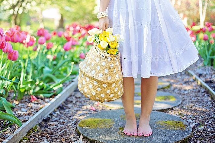 Frühling jill111/pixabay 90