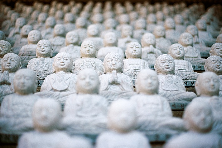 Buddha jedadan/unsplash 2