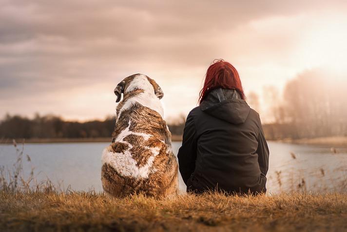 Hundefutter: Die richtige Auswahl und Menge für den Vierbeiner