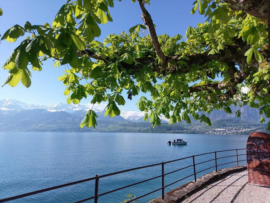 Parkhotel Gunten: Axel und ich genießen gleich bei Ankunft in Gunten die Ruhe und Schönheit des Sees