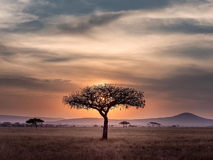 Tourismus in Entwicklungsländern: Die Friedrich Hospitality Foundation hilft
