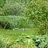Mit der Gartenbewässerung im Sommer rechtzeitig beginnen