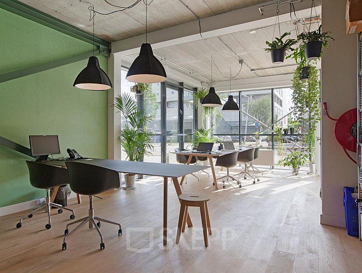 Die Effekte eines grünen Büros durch Büropflanzen