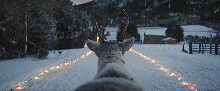 Dieses einsame Rentier wird zum neuen viralen Weihnachtsspot