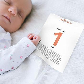 Mein 1. Kalender: Meilensteinkarte - Babys 1. Jahr