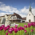 Endlich wieder verreisen - Radurlaub am Bodensee