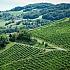 Sommerurlaub in Österreich: Inspirationen und hilfreiche Tipps