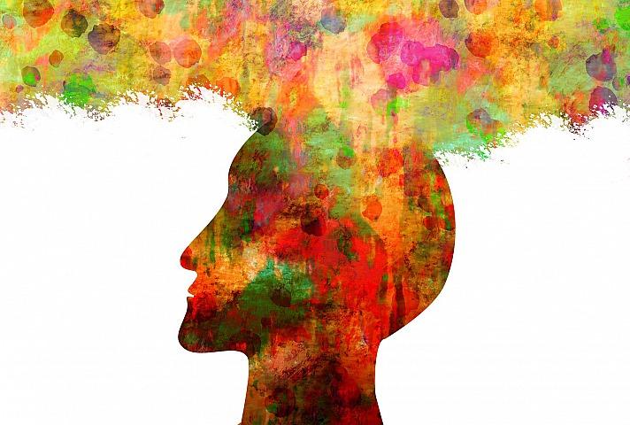 Philosophieren - Willenskraft UND Weisheit wachsen