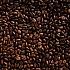 Robusta und Arabica: Kaffeebohnen im Vergleich
