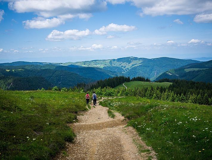 Der Feldberg - Die höchste Erhebung im Schwarzwald