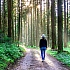 Ein Spaziergang an der frischen Luft ist Balsam für die Seele