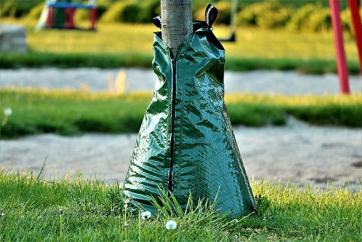 Die top Vorteile von Bewässerungssäcken für Bäume