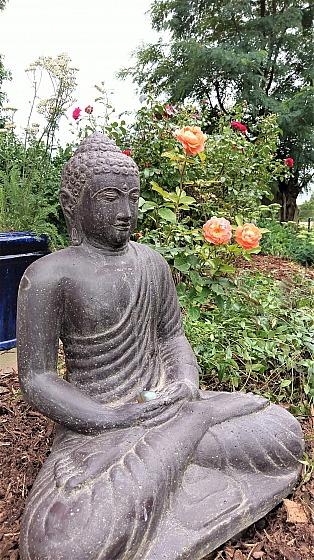Buddha im Dhyana Mudra der Meditation