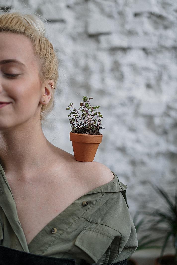 Pflanzen: Mit viel Liebe und Aufmerksamkeit ein grünes Paradies schaffen
