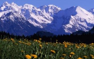 Aussicht auf dei Berge - Hotel Waldesruhe