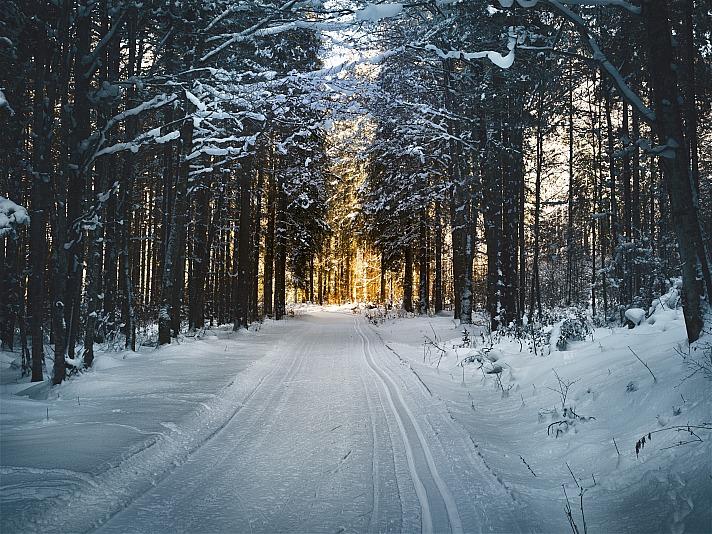Winter 8moments/unsplash 2