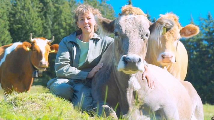 Ute Braun - unter Rindern