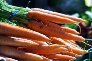 Karotten | Essen & Trinken » Gemüse | Günter Havlena / pixelio