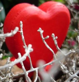 Herz im Silberwald   Freestyle » Karten & Glückwünsche   Christiane Löchner / pixelio