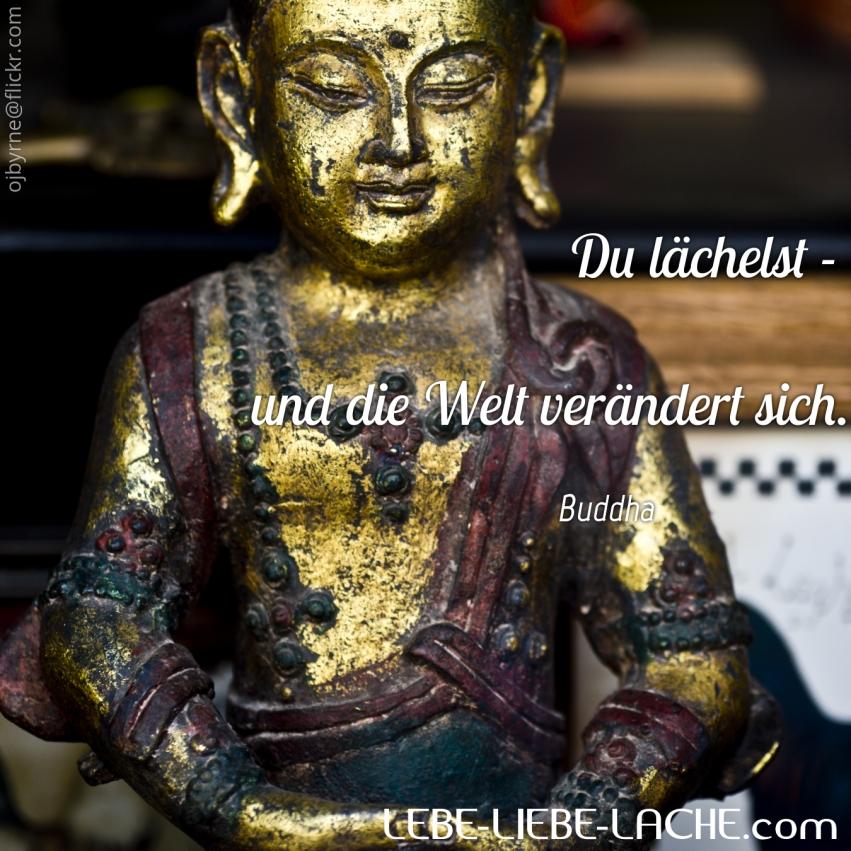 spruchkarte mit zitat du l chelst und die welt ver ndert sich buddha lebe liebe. Black Bedroom Furniture Sets. Home Design Ideas