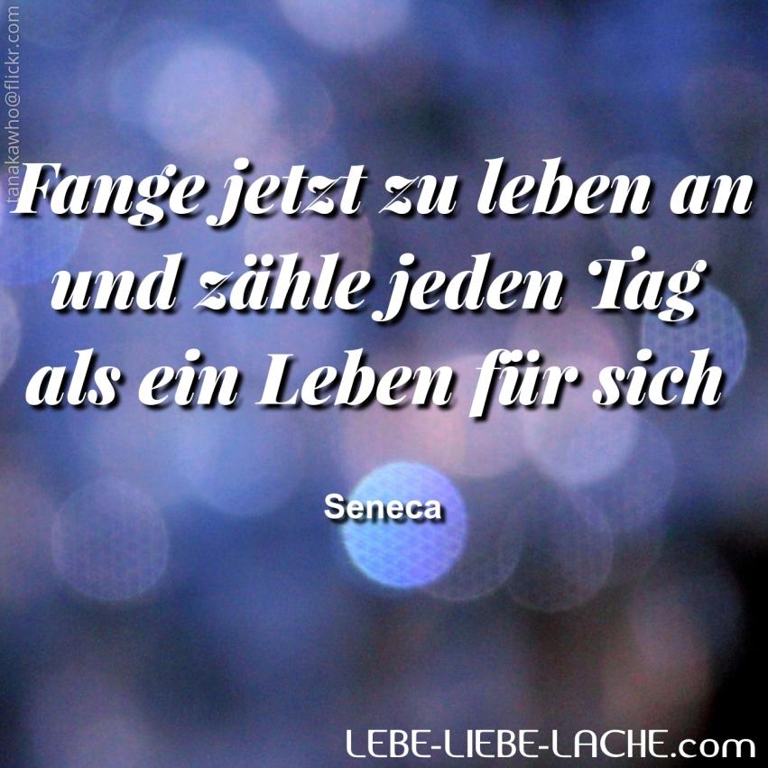 Seneca Zitate Freude