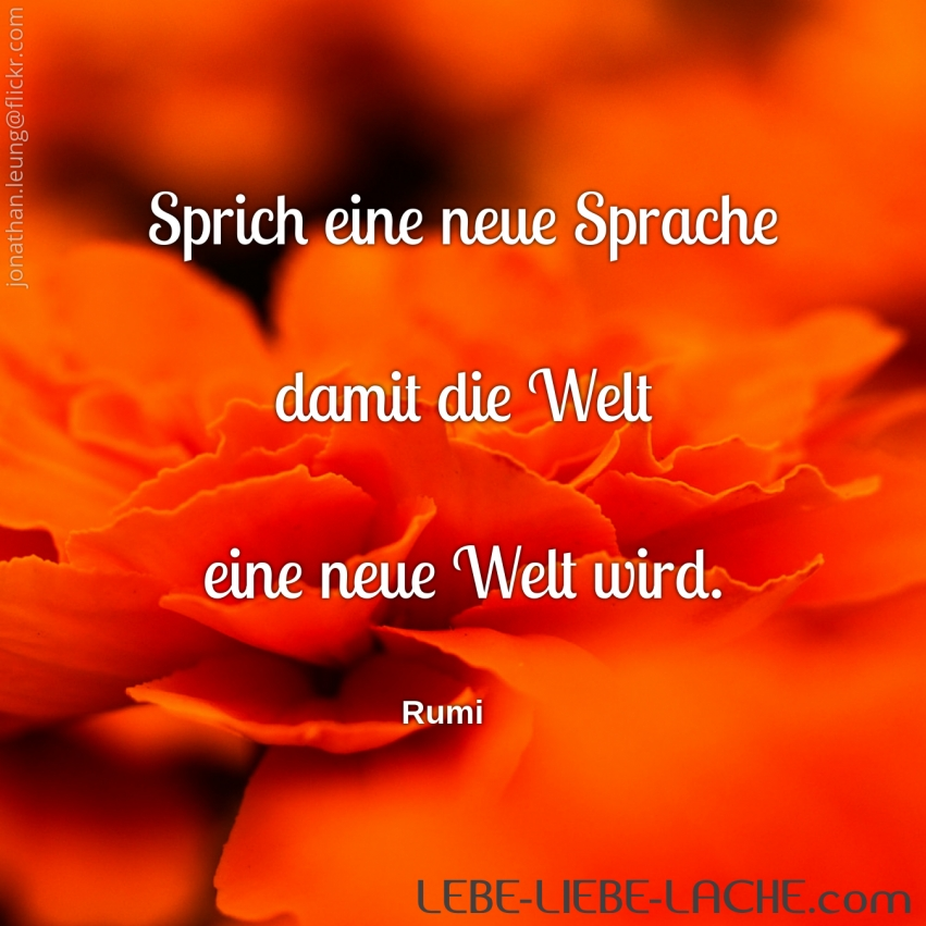 Image Result For Zitate Rumi Liebe